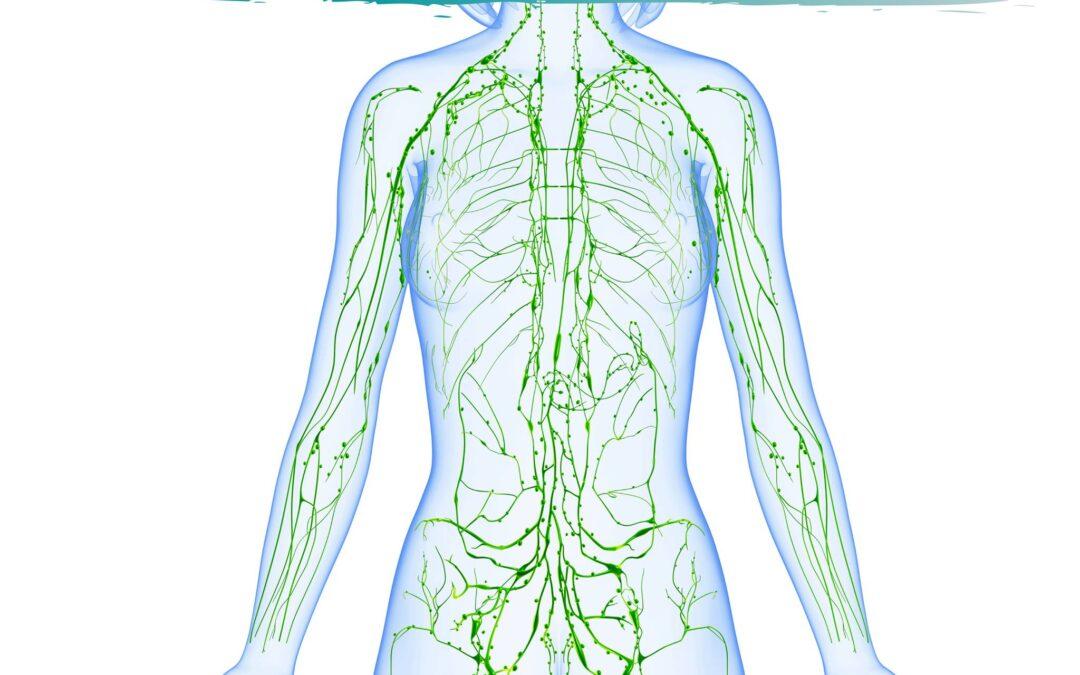Trattamento osteopatico e sistema linfatico